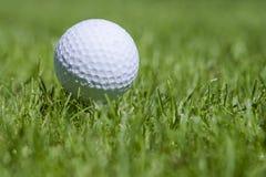Golfball på gräs Royaltyfri Fotografi
