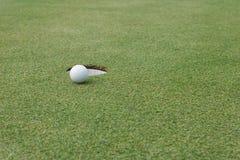 Golfball am Rand des Lochs lizenzfreies stockfoto