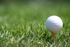 Golfball on Tee. To right of frame, with blurred grass background Royalty Free Stock Photography