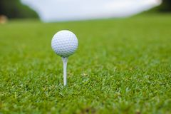 Golfball on a tee against the golf course Royalty Free Stock Photos