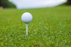 Golfball on a tee against the golf course. Golf ball on a tee against the golf course Royalty Free Stock Photos