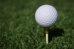 Golfball on tee. Golfball on wooden tee on a golf course Stock Image