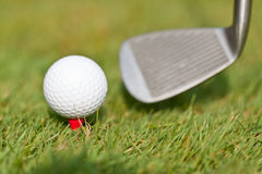 Golfball und Eisen auf grünem Gras führen den Makrosommer im Freien einzeln auf Stockfotos