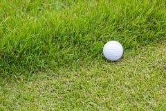 Golfball und grünes Gras Stockfotografie