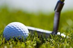 Golfball und Putter 1 Lizenzfreies Stockfoto