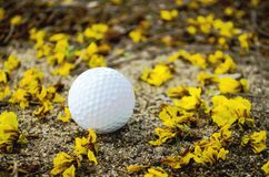 Golfball with yellow flower. Golf ball with orange tee on green grass Royalty Free Stock Photography