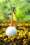 Golfball with yellow flower. Golf ball with orange tee on green grass Stock Photography