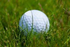 Golfballgras lizenzfreie stockfotos