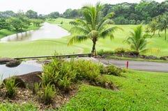 Golfbana Royaltyfri Foto
