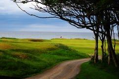 Golfbana för Skottland sammanlänkningsstil Royaltyfri Bild