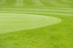 Golfbana. grön fältbakgrund royaltyfria foton