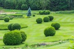 Golfbana i bygden royaltyfria foton