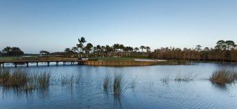 Golfbana i Florida i vinter Royaltyfri Bild