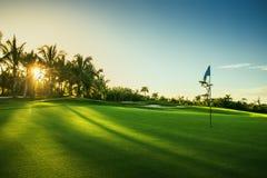 Golfbana i trpical semesterort Arkivfoto