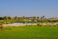Golfbana på den Saadiyat ön, Abu Dhabi, UAE royaltyfri fotografi