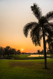 Golfbana på solnedgången Arkivbilder