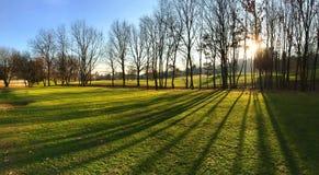 Golfbana på solnedgången Höstsäsong solig dag Arkivfoton
