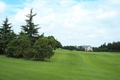 Golfbana som cirklas av Trees Fotografering för Bildbyråer