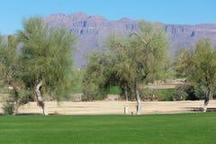 Golfbana som fodras med träd och berg i bakgrunden arkivbilder