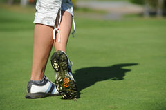 Golfbana - Tjeckien royaltyfri bild