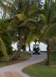 Golfbanabana med golfvagnen Arkivfoton