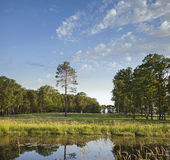 Golfbanafarled med träd och damm i sol för sen eftermiddag Fotografering för Bildbyråer