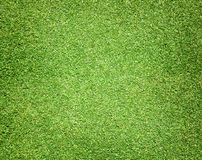 Golfbanor gör grön gräsmatta Royaltyfri Bild