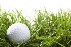 Golfbegrepp Royaltyfria Bilder