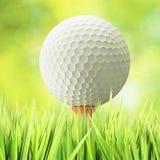 Golfbegrepp Arkivfoto