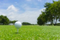 Golfbegrepp: Golfboll på golfbanan, en golfballset upp för royaltyfri bild