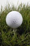 Golfboll Royaltyfri Bild