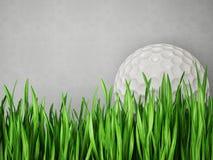 Golfboll Royaltyfria Bilder