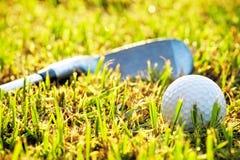 Golfboll i gräset arkivfoto