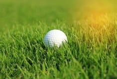 Golfboll i grovt gräs på farled royaltyfria bilder