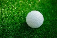 Golfboll med puttern på grön kurs Selektivt fokusera Fotografering för Bildbyråer