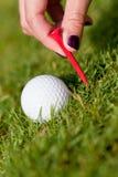 Golfboll och järn på grönt gräs specificerar utomhus- makrosommar Royaltyfri Foto