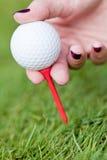 Golfboll och järn på grönt gräs specificerar utomhus- makrosommar Royaltyfri Fotografi