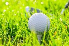 Golfboll och putter Arkivfoton
