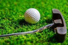 Golfboll och putter på gräs royaltyfria bilder