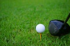 Golfboll och utslagsplats med guld- kursbakgrund som är klar till utslagsplatsen av royaltyfri foto
