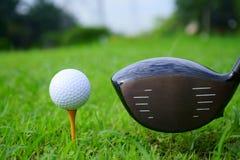 Golfboll och utslagsplats med guld- kursbakgrund som är klar till utslagsplatsen av arkivbilder