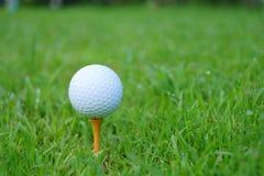 Golfboll och utslagsplats på grön kursbakgrund för golf arkivfoton
