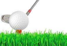 Golfboll på det gröna gräset av golfbanan Royaltyfri Bild