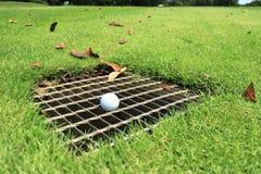 Golfboll på dräneringskärmen Royaltyfri Bild