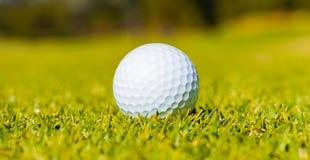 Golfboll på en farledgräsplan på en golfbana fotografering för bildbyråer