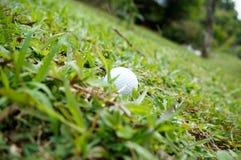 Golfboll på en lutning Fotografering för Bildbyråer