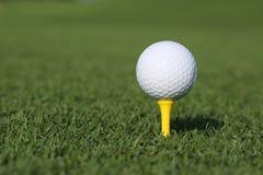 Golfboll på en utslagsplats Arkivfoto