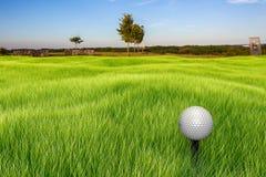 Golfboll på en utslagsplats Royaltyfri Bild