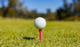 Golfboll på en utslagsplats på en golfbana royaltyfri fotografi