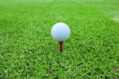 Golfboll på en utslagsplats i kurs för grönt gräs royaltyfri bild